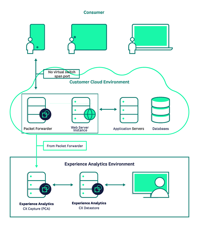 Cloud deployment with packet forwarder.